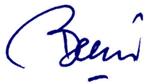 Berni Deep Blue 150 x 84